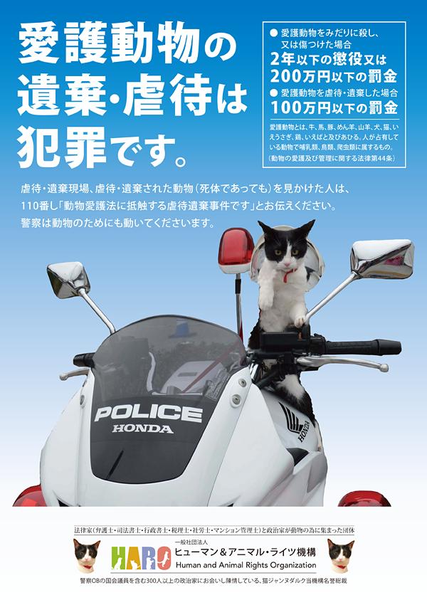 ①動物虐待防止プロジェクト