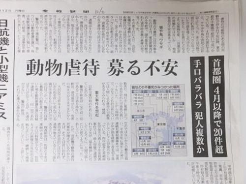 KIT② ポスター「動物虐待防止」貼付・配布 20枚
