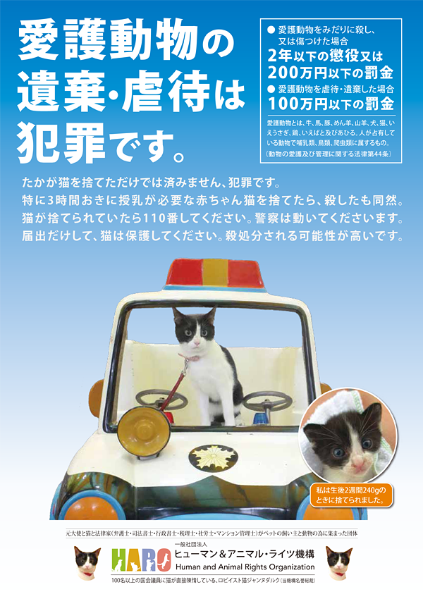 KIT③ポスター「遺棄は犯罪。たかが猫を捨てただけでは済みません。」貼付・配布 20枚