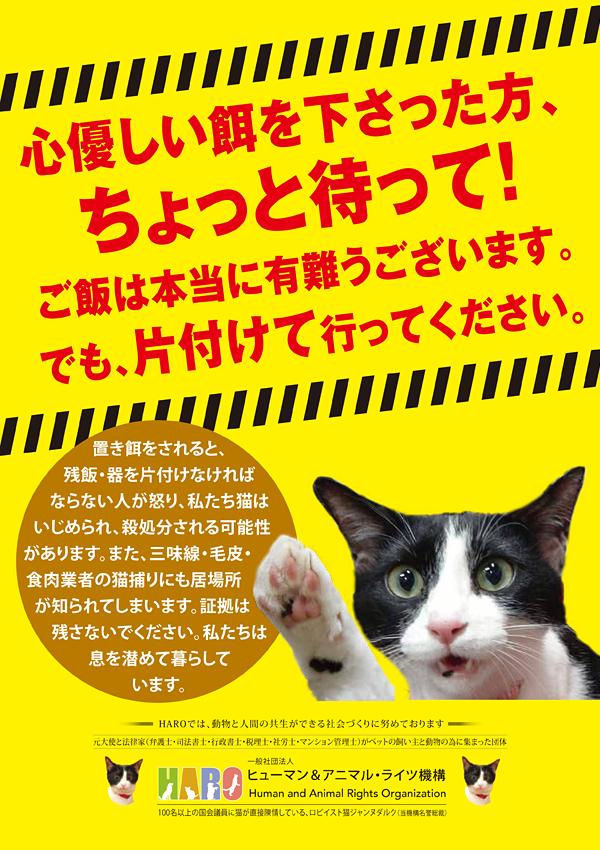②「置き餌は他人に迷惑だけでなく、猫がもっとも迷惑 」啓発 プロジェクト