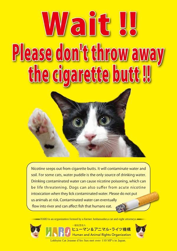 ①「たばこのポイ捨て禁止 水たまりの水で命をつないでいる猫のために」プロジェクト