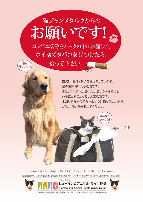 ②「吸殻を拾おう 水たまりの水で命をつないでいる猫のために」プロジェクト